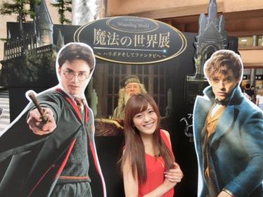 【魔法の世界展~ハリポタからファンタビへ~】レポート
